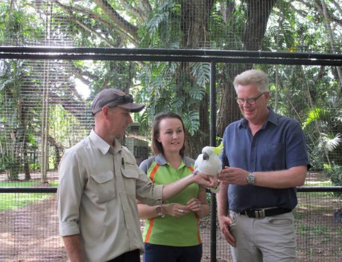 Port Moresby's Nature Park opens new parrot aviary